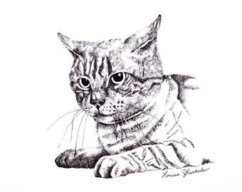 Cat / Pen & Ink - print