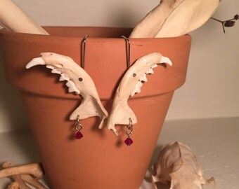 Jaw Bone Earrings