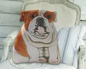 English Bulldog Stuffed Dog -  Front only - Dog Pillow - Stuffed Animal