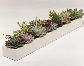 Concrete Planter, Succulent Planter, Planter, Concrete,  Large Planter, Cactus Planter, White, Natural Grey, Dark Grey,  Herb Planter