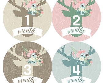 FREE GIFT, Woodland Baby Shower, Baby Girl, Woodland Nursery, Woodland Month Stickers, Deer Month Stickers, Flowers, Deer, Pink, Mint, Tan
