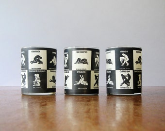 Vintage Bawdy Astrological Tumblers / Glasses - 70's Bar Ware