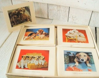12 vintage dog greeting cards color photos six designs blank envelopes boxed stationery 1960s