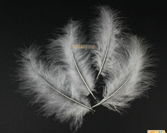 50 Pieces White  Feather 10-15cm (YM13)