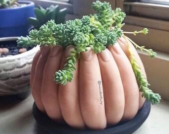 Finger Pot // Finger Planter