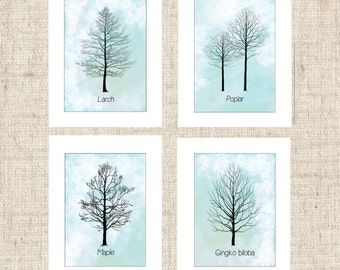 Silhouette prints, set of 4 tree prints, matted, 5x7 and 8x10 illustrations, economical art, botanical silhouettes