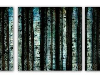 Aspen Tree Illustration Mixed Media Art Set of 3