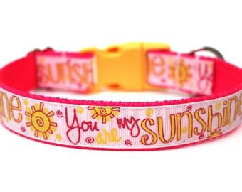 """Summer Dog Collar 1"""" Sunshine Dog Collar"""
