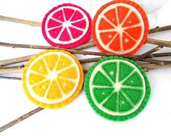 Coasters Set of 4 Citrus Fruit Slice Coasters with surface protecting plastic insert Handmade Lemon Lime Orange grapefruit