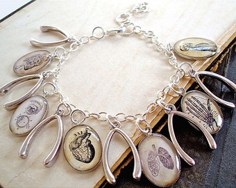 The Anatomy Book - Anatomy Charm Bracelet - Antique Anatomical Print Charm Bracelet in Silver