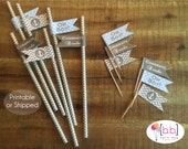 Nautical Baby Shower Straw Flags Party Picks Toothpick- Gray & Blue- Printable or Shipped