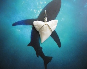 Shark Tooth Necklace Pendant, Modern Day Bull Shark tooth, Silver plated wire wrap