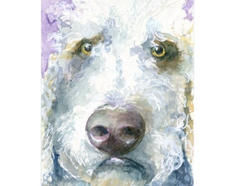Watercolor Dog,Labradoodle Art, Print Dog Portrait, Dog Portrait, Dog Print, Animal Print
