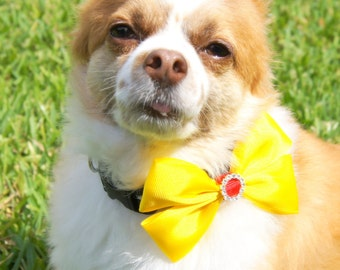 Yellow Bow Dog Collar Attachment
