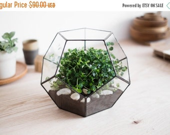 "ON SALE geometric glass terrarium ""dodecahedron"" - handmade glass terrarium - planter for indoor gardening"