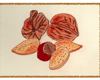 NEW! MIXED NUTS. Colorful and hand drawn notecard