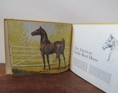 America's Horses by SAvitt // Vintage Childrens Book about Horses //