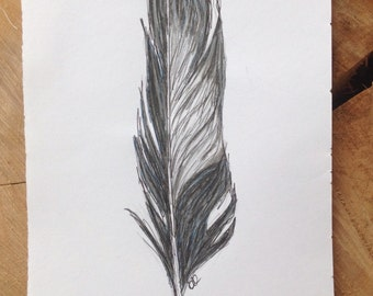 Black and white magpie feather drawing