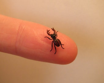 Dollhouse miniature Stag Beetle in 1:12 scale - Made by Fanni Sandor IGMA Fellow