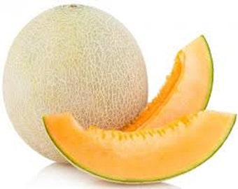 CANTALOUPE MELON SEEDS 15 Fresh fruit seeds ready to plant in your garden