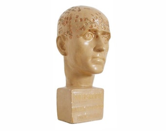1930s Rare Art Deco Psychology Scientific Phrenology Head of a Man for NEOSKOPIE Psycho-Diagnostics by DURVILLE-SCHARMANN