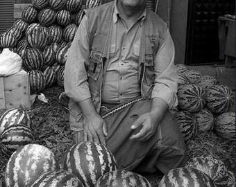 Cream of Saskatchewan Watermelon, Heirloom gardening seeds
