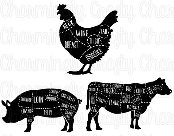 Chicken Pork Beef Pig Cow Poultry Meat Cut Chart Svg Png