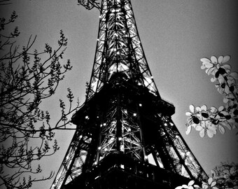 "Eiffel Tower Black and White Paris, France 8""x10"""