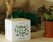 Grow Your Own Lucky Clover Plant Kit