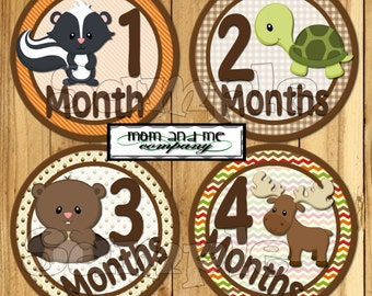 Monthly Baby Stickers Boy Stickers Woodland Baby boy Month Milestone Stickers Baby Month Stickers Monthly Bodysuit Stickers Forest Animals