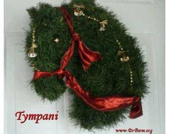 Typani