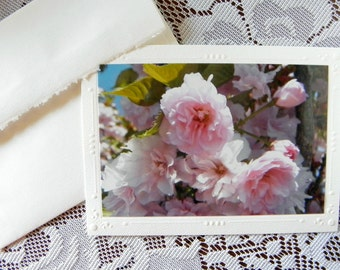 Pink Cherry Blossoms, Handmade, Botanical Photo Greeting Card, created by Pam of Pam's Fab Photos