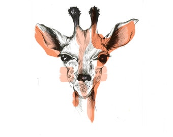 Baby Giraffe - Illustration/Art Print