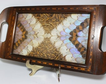 Butterfly Tray Vintage Rare Size 1930s  Inlay Wood Made with Real Butterflies Wings Tray  (Brazil)