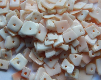 Gift of the Sea Shell Heishi Beads - Natural - Over 200 Pcs.