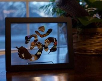 6x8 butterfly Wing Om