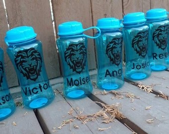 Custom Water Bottle, Personalized Water Bottle, Customized Gift, Personalized Gift, Stocking Stuffer, Christmas Gift