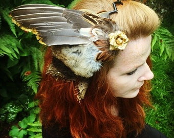 pigeon wing,rabbit fur and pheasant fascinator, with black lace and gold rose.