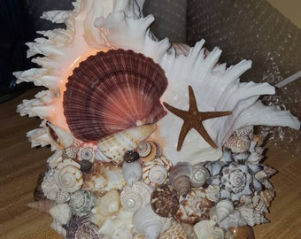 Ramosus seashell night light lamp