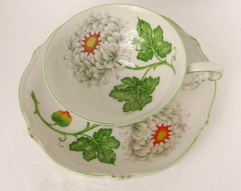 H&G Selb Bavaria Germany Heinrich Porcelain Bone China Cabinet Display Cup and Saucer Chrysanthemum 1930 - 1950 VGC