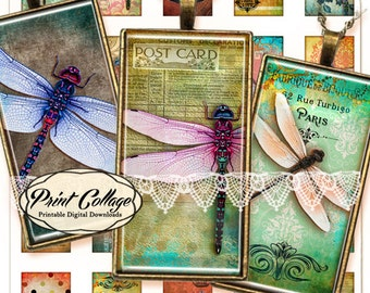 Dragonfly Digital Collage Sheet 1x2 inch Printable for glass resin domino pendants magnets bezel settings photo charms trays c91