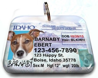 Idaho driver license dog id collar unique dog id tags custom pet id tag