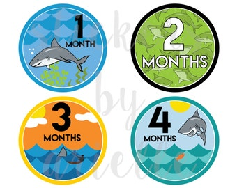 Month by Month Baby Stickers - Shark Theme