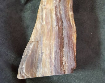 Petrified wood. Golds, browns and russet tones. Flat bottom.