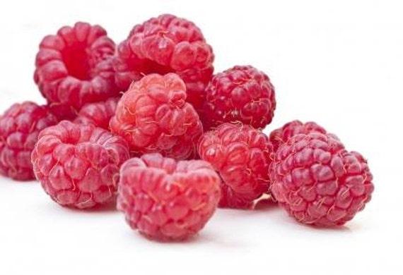 to Raspberry Fragrance Oil 15 ml,soap making supplies, fruit fragrance ...