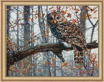 Wise Owl Counted Cross Stitch Kit