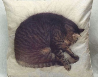 Snugly Sleeping Cat - Pillow Cover