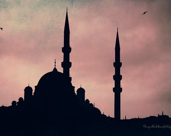 Blue Mosque photograph, Istanbul Turkey, Mosque Sulta nahmet minarets, Architecture exotic Sultan  Ottoman, silhouette travel photo,wall art