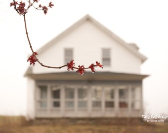 Shaw Farmhouse Sutton, MA Spring Bud Original Photograph