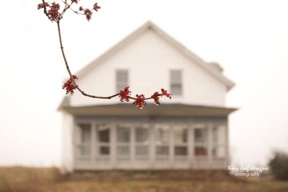 Shaw Farmhouse Sutton, MA Spring Bud Original Photograph